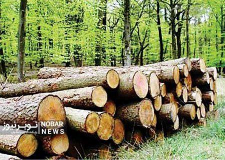 نیاز ضروری جنگلهای ارسباران به نیروهای حفاظتی