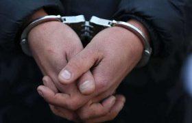 دستگیری ۶۰ متخلف زیست محیطی در استان